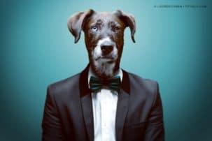 Business-Knigge: Die wichtigsten Jobregeln